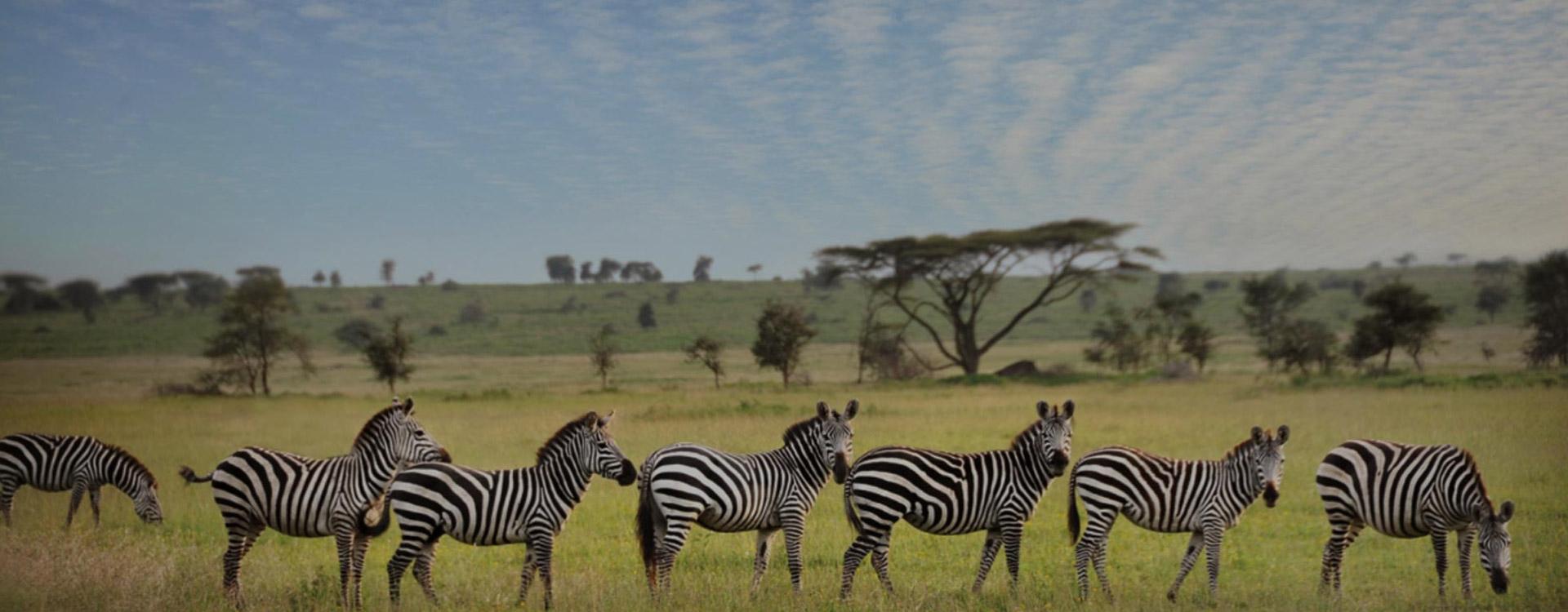 Tanzania Destinations