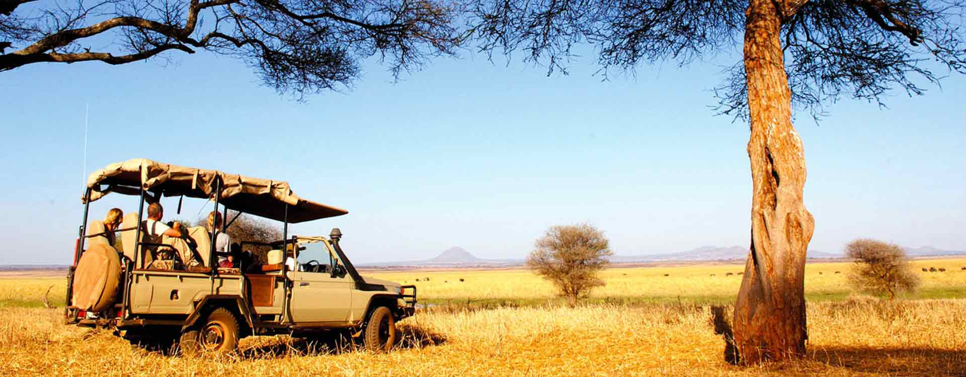 Tanzania Travel Tips